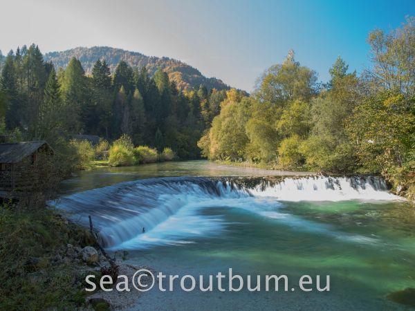 Pix from the rivers around Soca Valley, Kobarid, Slovenia