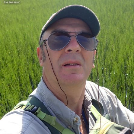 Ivan Randjelovic (me)