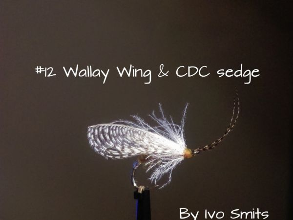 A evolution of fly tying