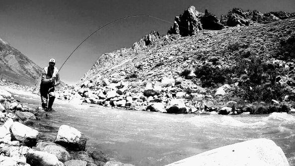Situación de pesca en cordillera Mendocina