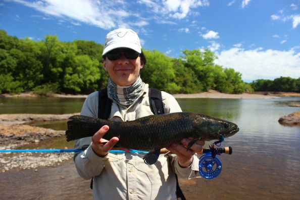 Aurelio Martins Fly FIshing for  blue wolf fish in clear waters