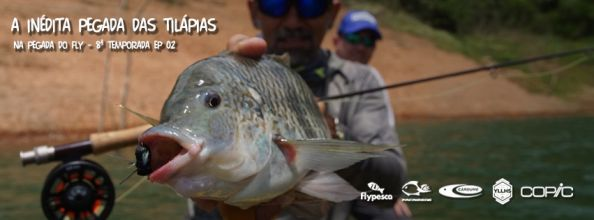 TILAPIA ON THE FLY!