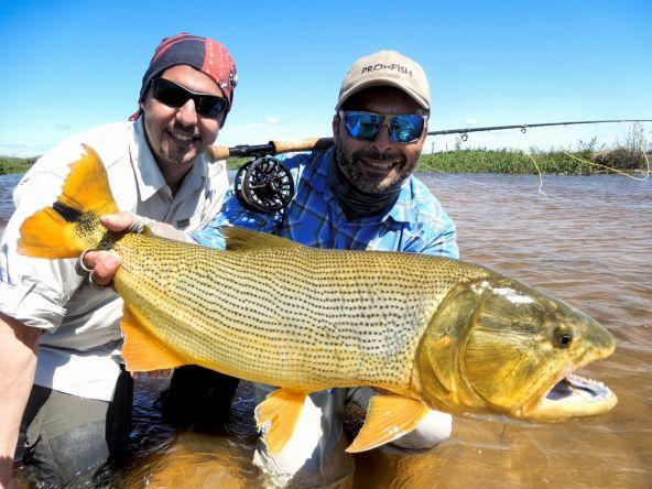 En los bancos se logran muy buenos dorados, en La Paz, Entre Ríos, Argentina. Partes de nuestros viajes que brindamos.