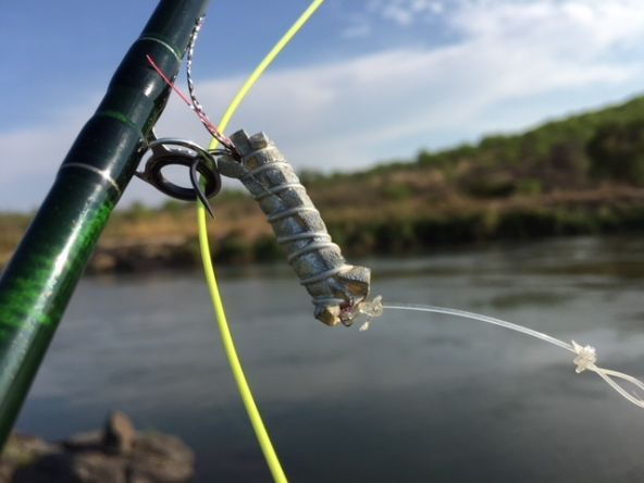 Dry fly fishing for Tiger fish