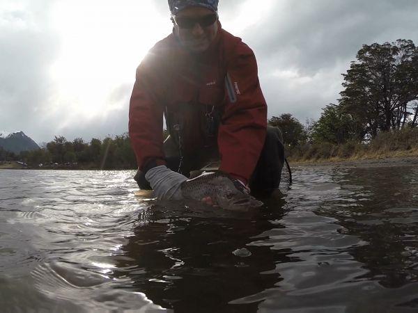Pesca y Devolución