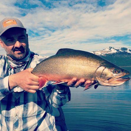 Noviembre esta que arde! #brookies #fontinalis #fontinalisflyfishing #flyfishing #berta #salveniusfontinalis #salmonidae #pescaconmosca #patagoniaargentina