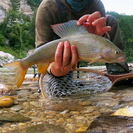 💚💚💚 #flyfishingodec #slovenia #highlights #2019