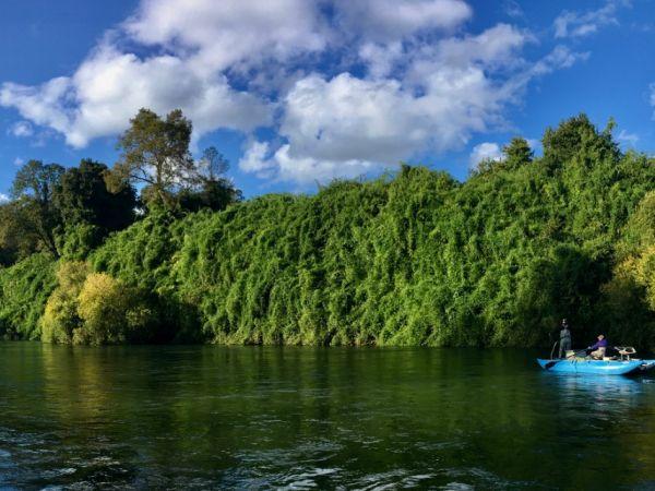 Flotada Río Rahue 2020