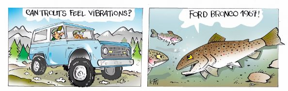 On The Rod  Cartoon