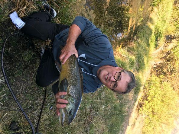 Utah tiger trout