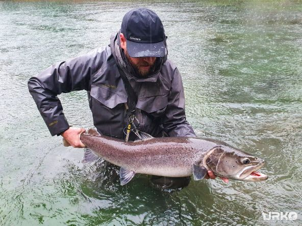A few days ago, in heavy rain, the first trophy hucho hucho of the 2020/21 season was landed. This beast of the fish measured way over 1m and had more than 10kg.